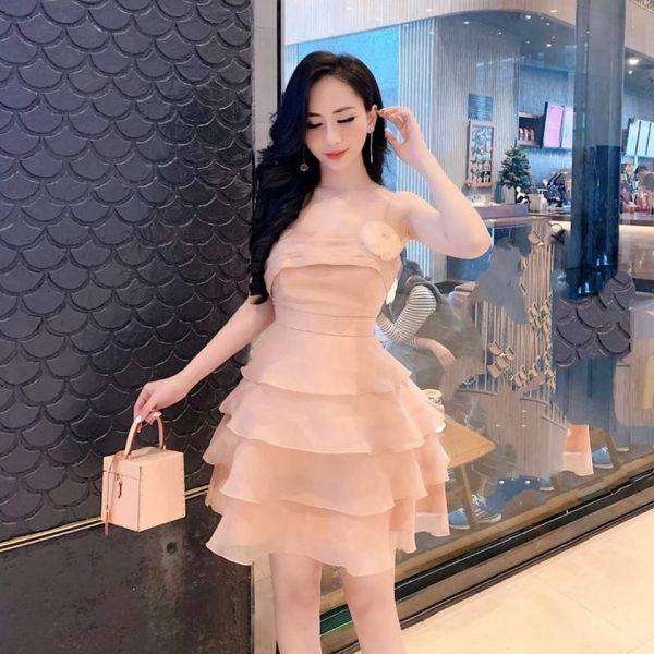 Váy đầm dạ hội 2