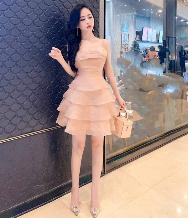 Váy đầm dạ hội 3
